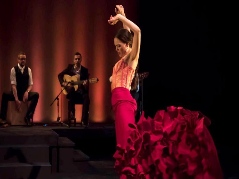 Фламенко вечер с включена напитка