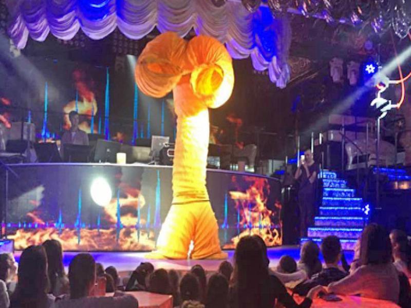 Посещение на фламенко шоу с програма  2019г