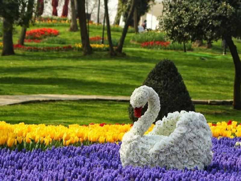 Фестивала на лалето с 2 нощувки - Истанбул 2019