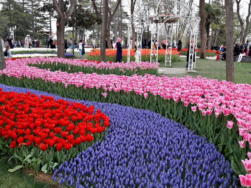 Фестивала на лалето с 2 нощувки  Истанбул 2020