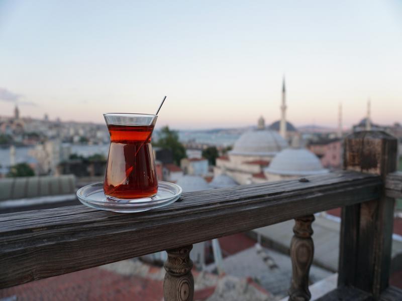 Фестивала на лалето в Истанбул 2020 с 3 нощувки