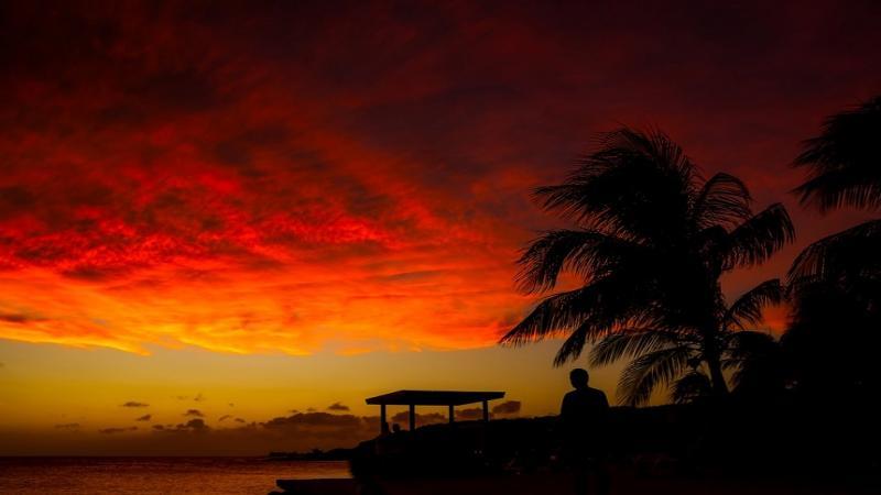 Приключение в Карибско море