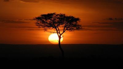 В прегръдката на Кения - сафари и плаж