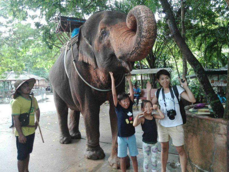 Полудневен тур с езда на слонове
