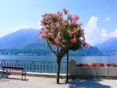 Италианските езера и Милано 30.09.2019