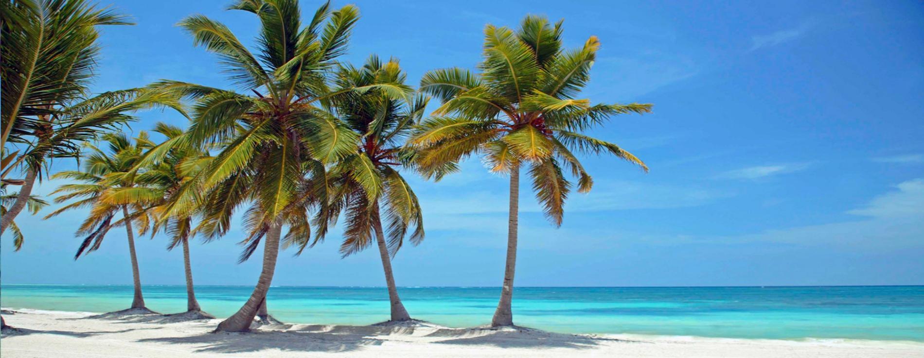 Карибски приключения 2018-2019