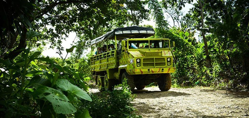 Carribean Nature Safari