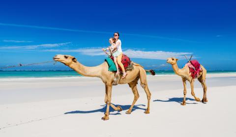 Ол инклузив почивка в Египет