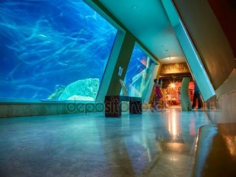"Посещение на аквариум ""Тюркоазоо"